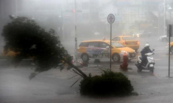 Тайфун Меранти, Метарнті