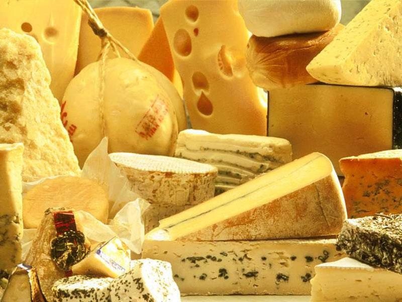свойства сыра, properties of cheese, властивості сиру
