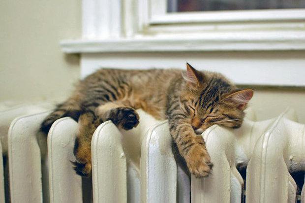 отопительный сезон, heating season, опалювальний сезон