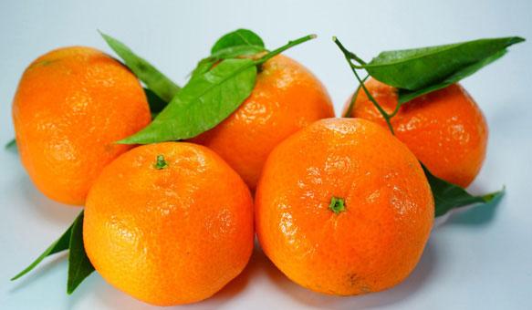 Мандарины, Tangerines, Мандарини