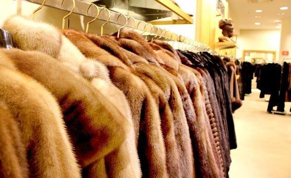 женские шубки, women's fur coats, жіночі шубки