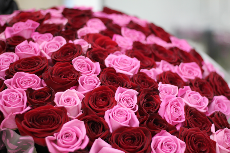 Букет роз, Bouquet of roses, Букет троянд