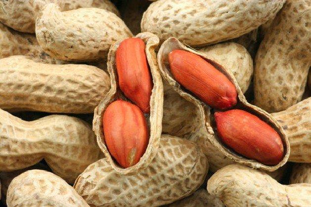 Арахис, Peanuts, Арахіс, Erdnuss