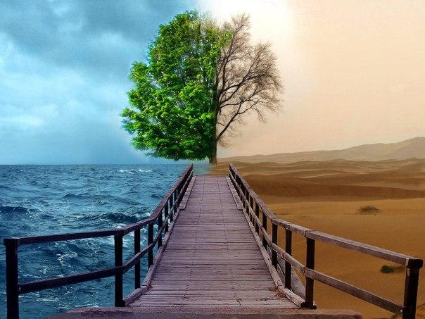 выбрать свой путь