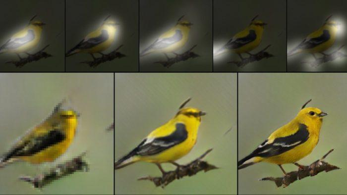 AI painted a bird